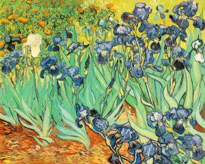 Irises, 1889.